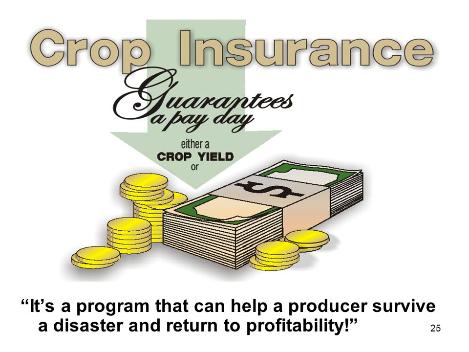 It's a program that can help a producer survive a disaster and return to profitability!