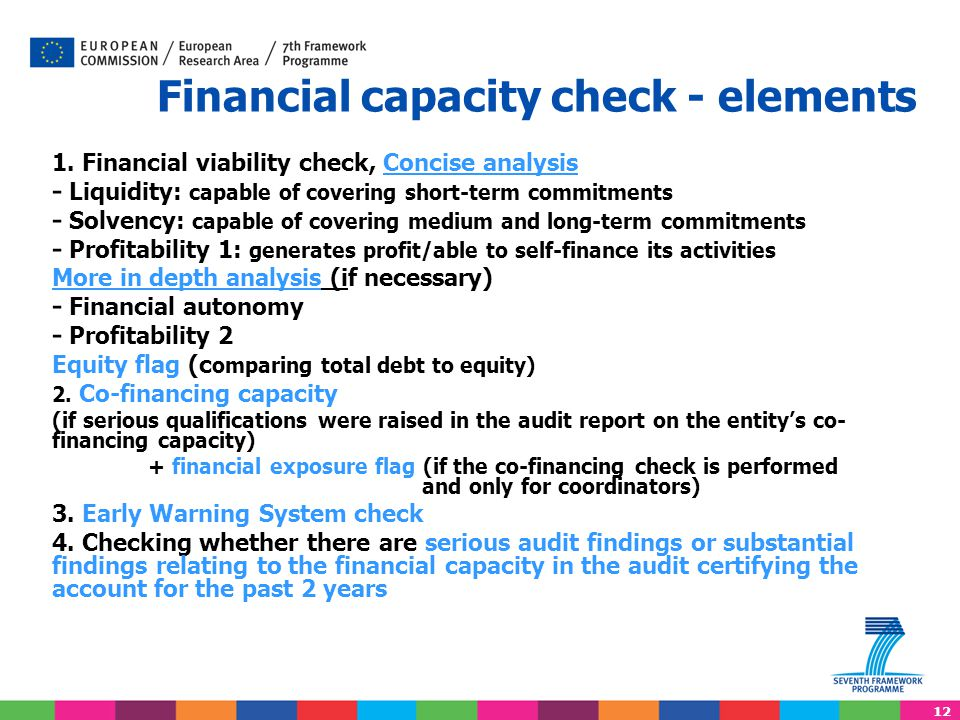 Financial capacity check - elements
