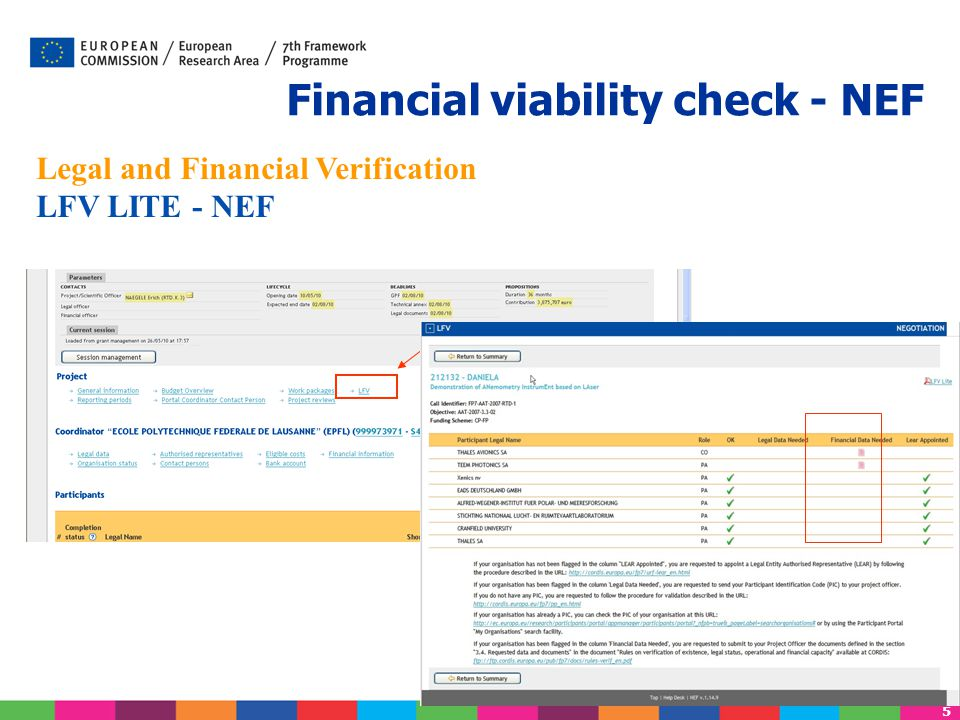 Financial viability check - NEF