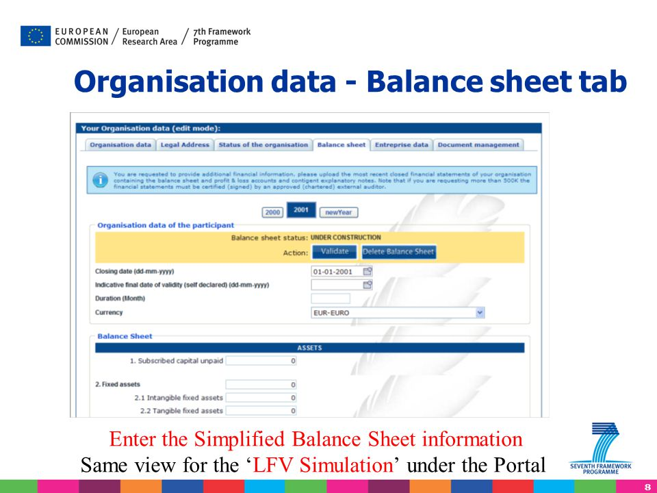 Organisation data - Balance sheet tab