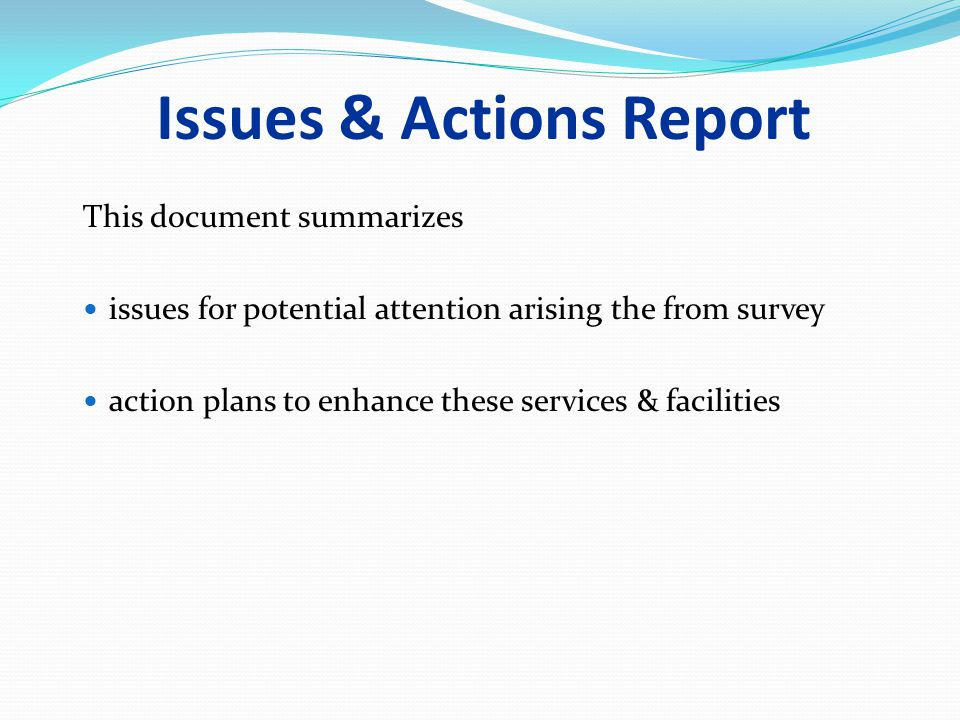 Issues & Actions Report