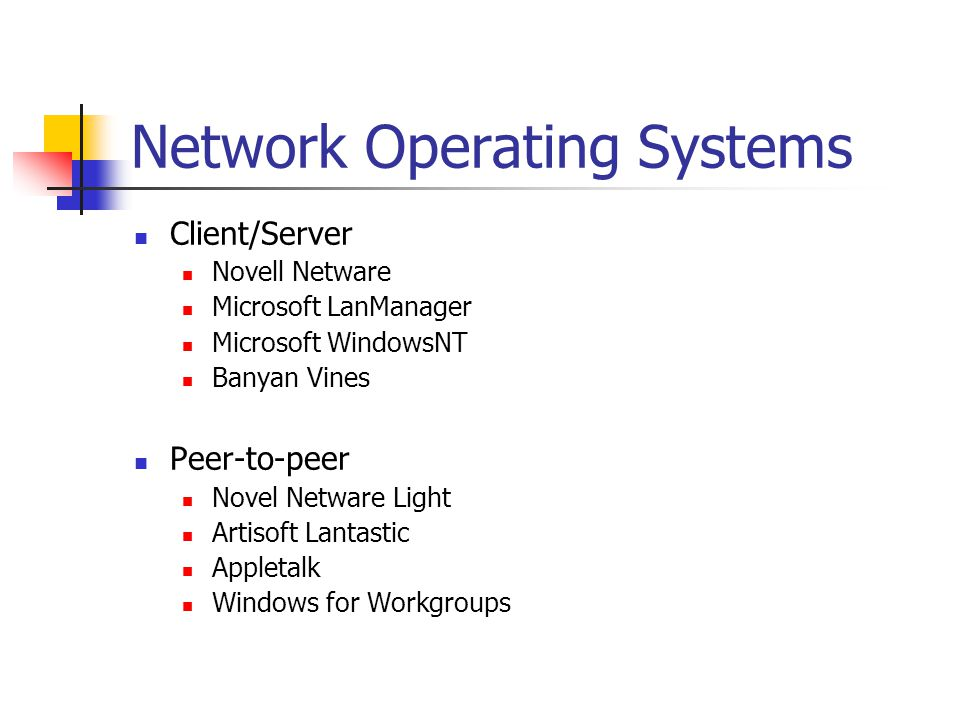Microsoft network operating system essay