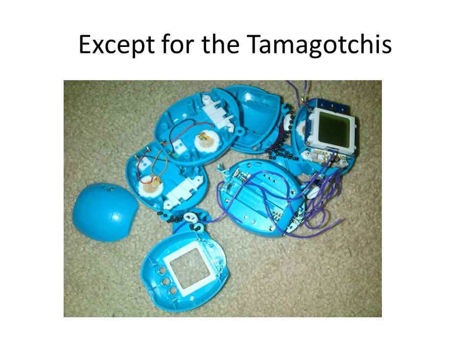 Except for the Tamagotchis