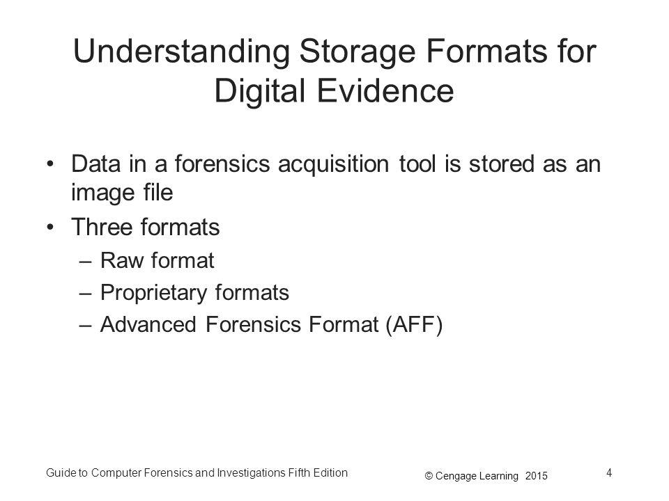 Understanding Storage Formats for Digital Evidence