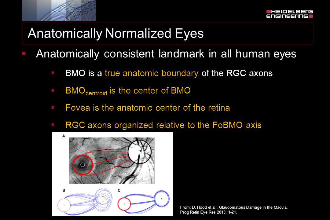 Anatomically Normalized Eyes