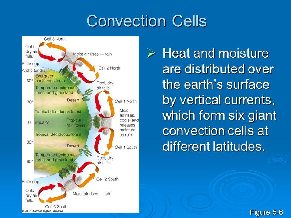 Convection Cells