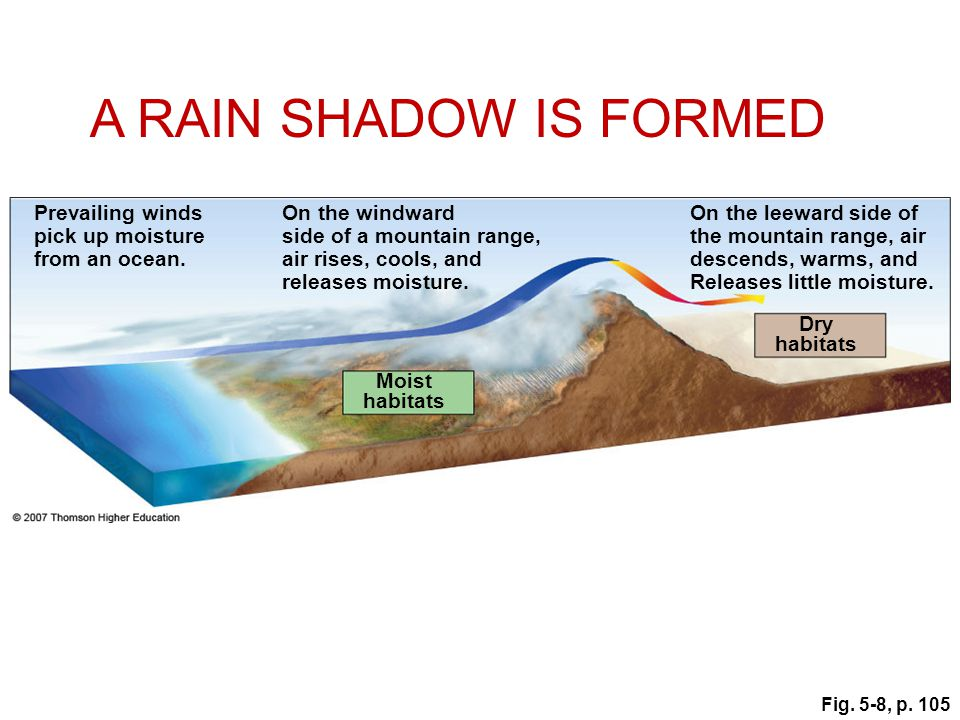 A RAIN SHADOW IS FORMED Prevailing winds pick up moisture