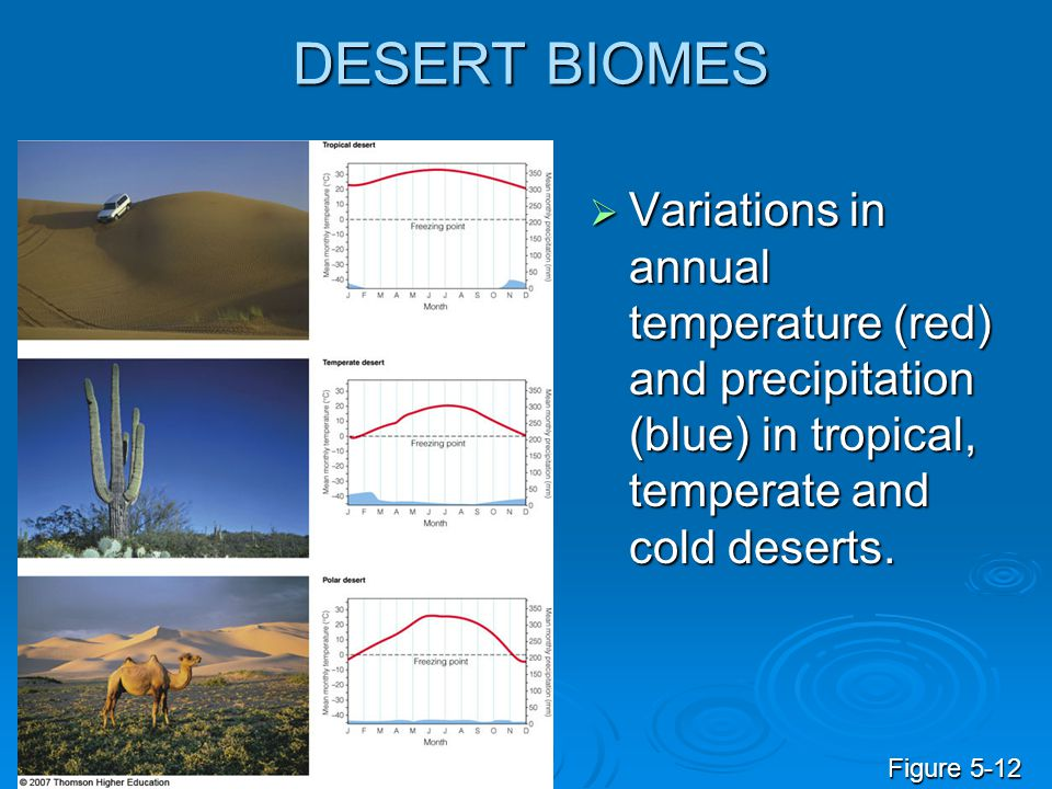 DESERT BIOMES Variations in annual temperature (red) and precipitation (blue) in tropical, temperate and cold deserts.
