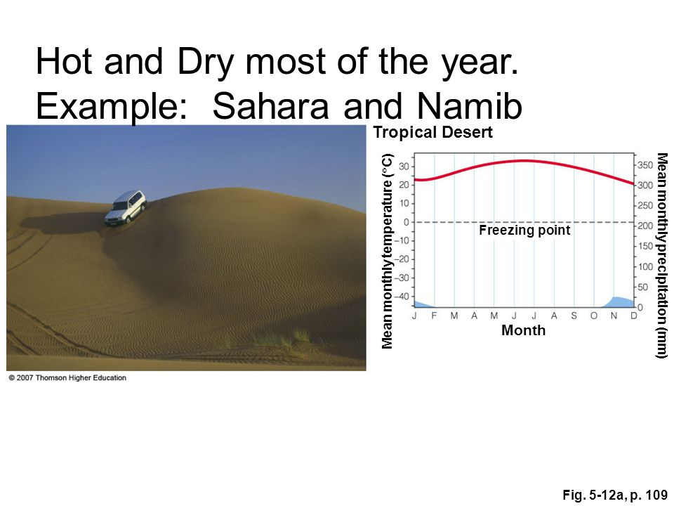 Hot and Dry most of the year. Example: Sahara and Namib