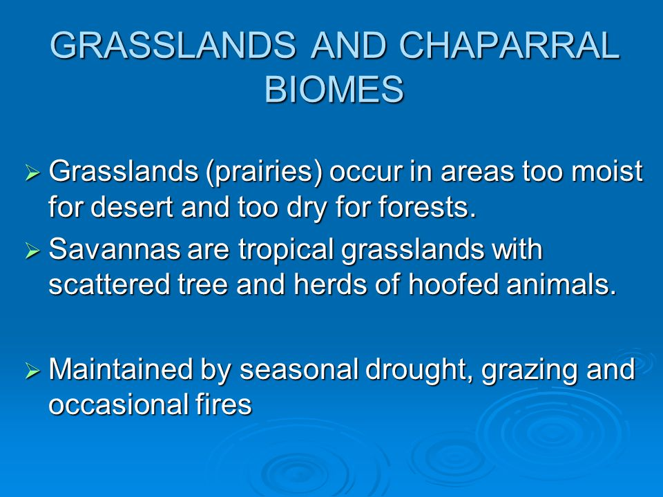 GRASSLANDS AND CHAPARRAL BIOMES