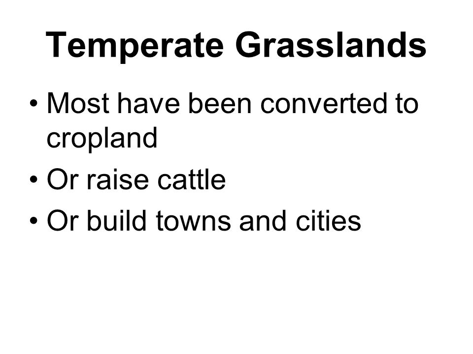 Temperate Grasslands Most have been converted to cropland