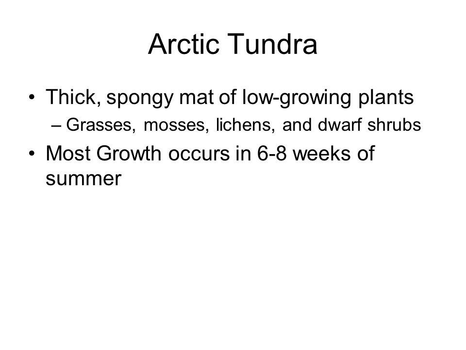 Arctic Tundra Thick, spongy mat of low-growing plants