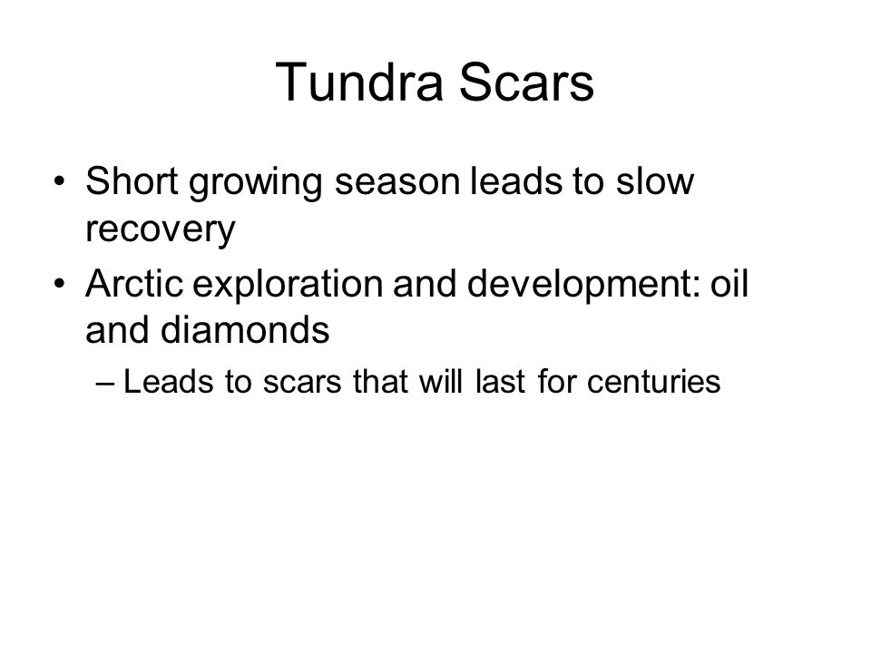 Tundra Scars Short growing season leads to slow recovery