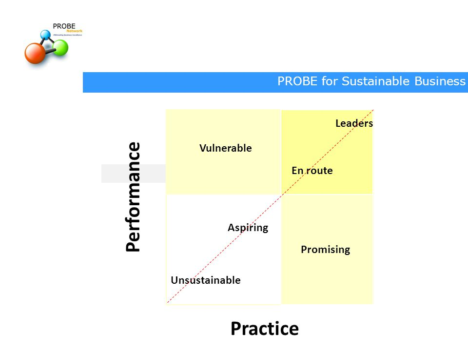 Performance Practice Leaders Vulnerable En route Aspiring Promising