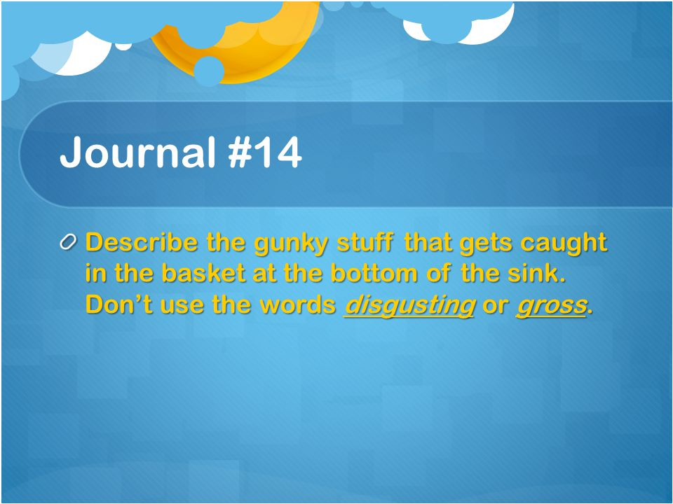 Journal #14 Describe the gunky stuff that gets caught in the basket at the bottom of the sink.