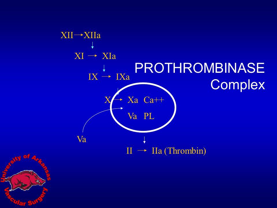 PROTHROMBINASE Complex