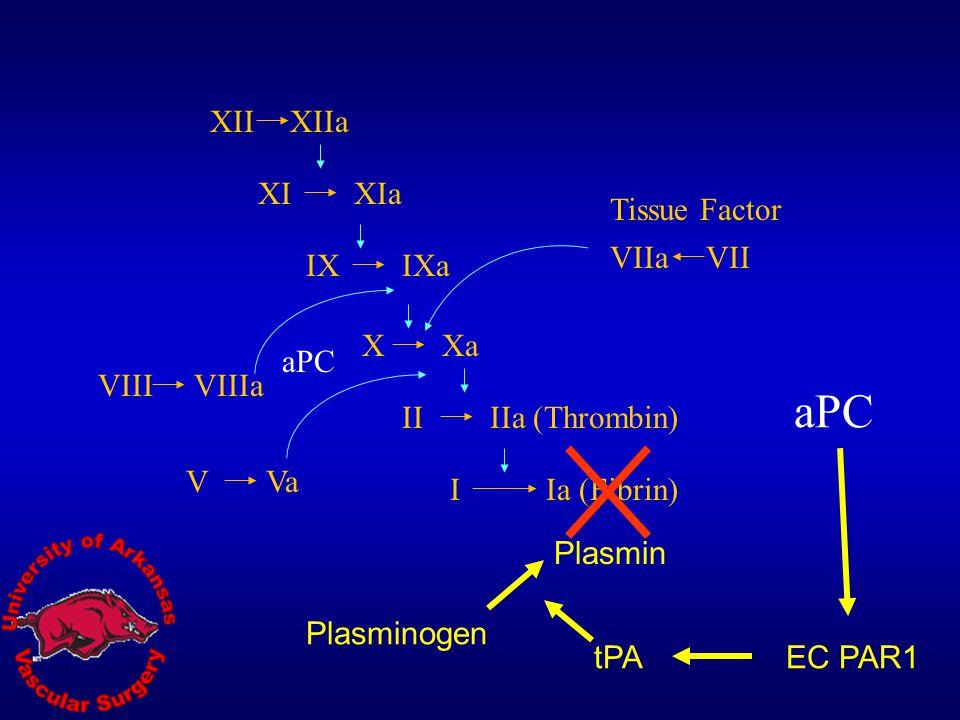 aPC XII XIIa XI XIa Tissue Factor VIIa VII IX IXa X Xa aPC VIII VIIIa