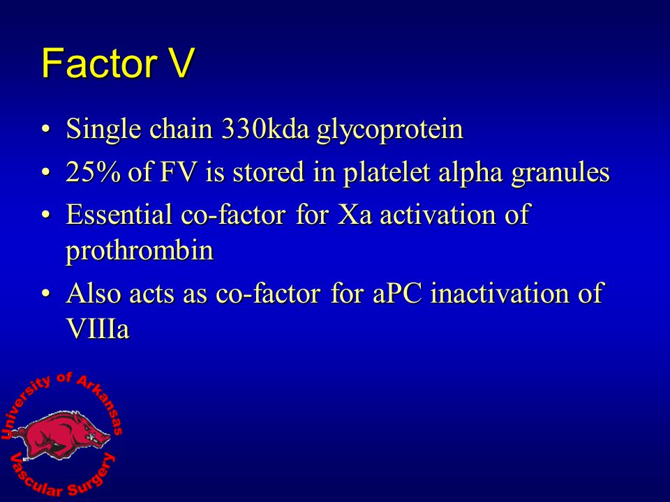 Factor V Single chain 330kda glycoprotein