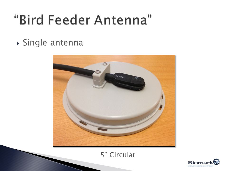 Bird Feeder Antenna Single antenna 5 Circular