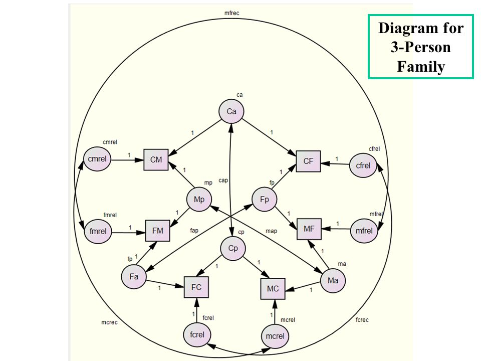 Diagram for 3-Person Family