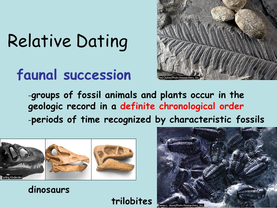What is the difference between absolute age and relative age of fossils