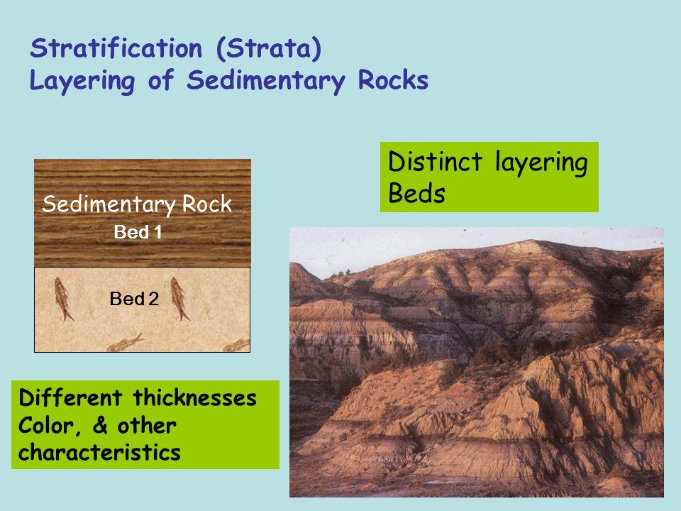 Stratification (Strata) Layering of Sedimentary Rocks
