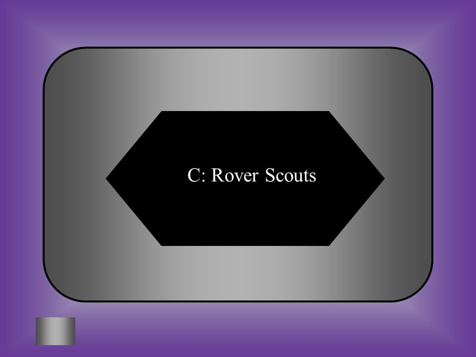 C: Rover Scouts