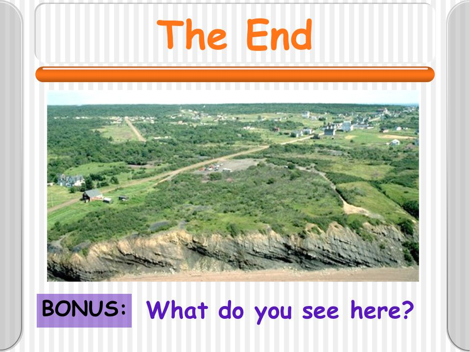 The End BONUS: What do you see here
