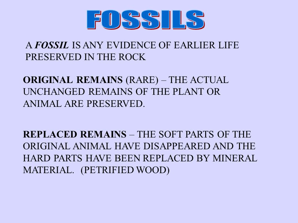 FOSSILS A FOSSIL IS ANY EVIDENCE OF EARLIER LIFE PRESERVED IN THE ROCK
