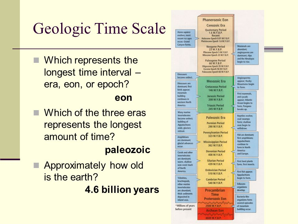 Geologic Time Scale Which represents the longest time interval – era, eon, or epoch Which of the three eras represents the longest amount of time