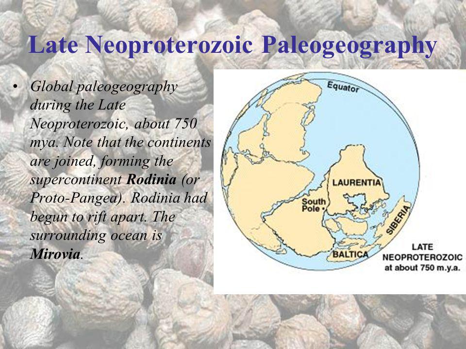 Late Neoproterozoic Paleogeography