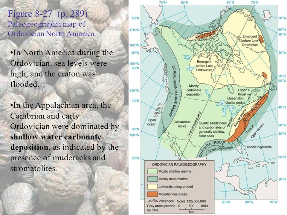 Figure 8-27 (p. 289) Paleogeographic map of Ordovician North America.