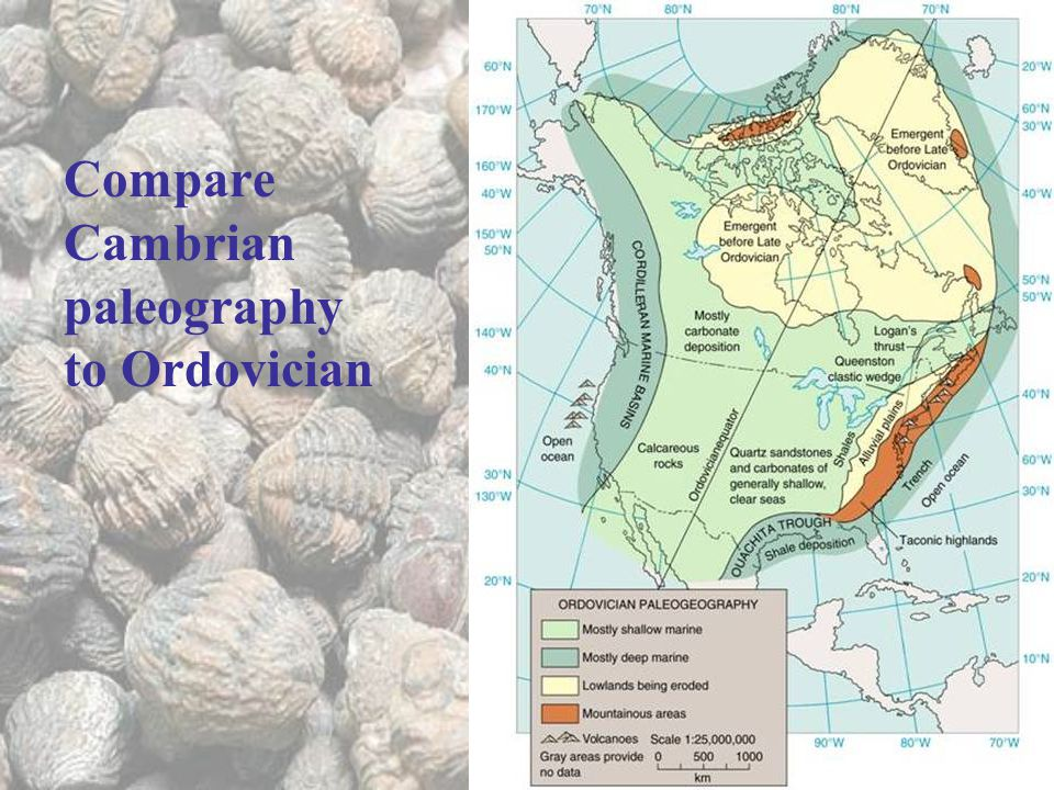 Compare Cambrian paleography to Ordovician
