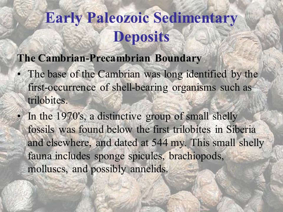 Early Paleozoic Sedimentary Deposits