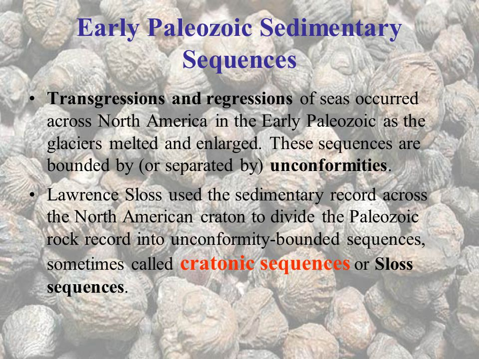 Early Paleozoic Sedimentary Sequences