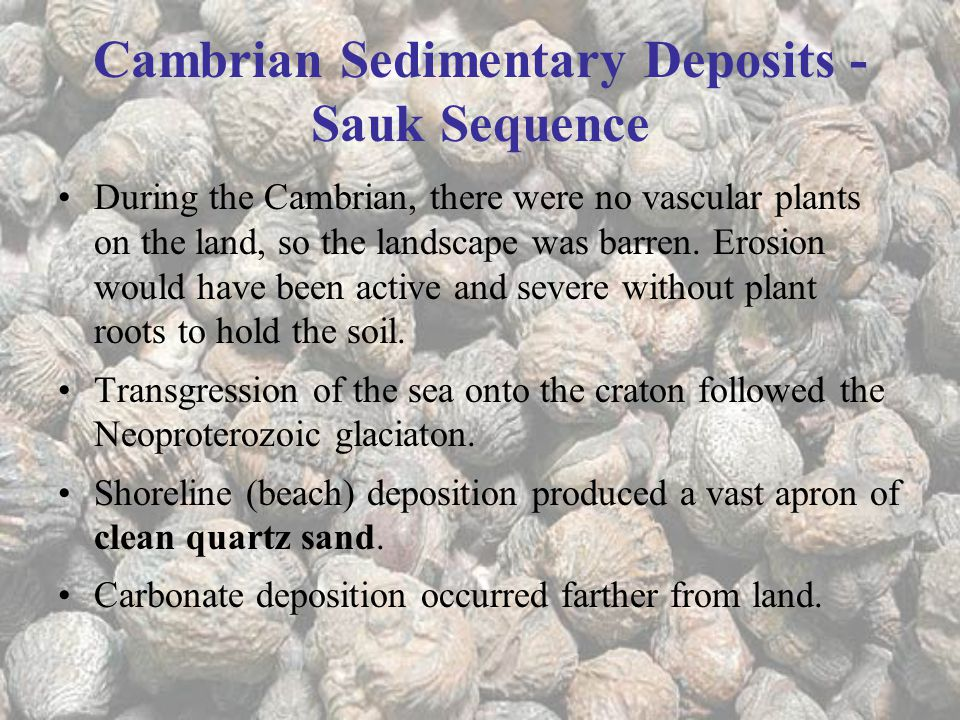 Cambrian Sedimentary Deposits - Sauk Sequence