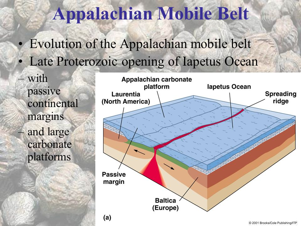 Appalachian Mobile Belt