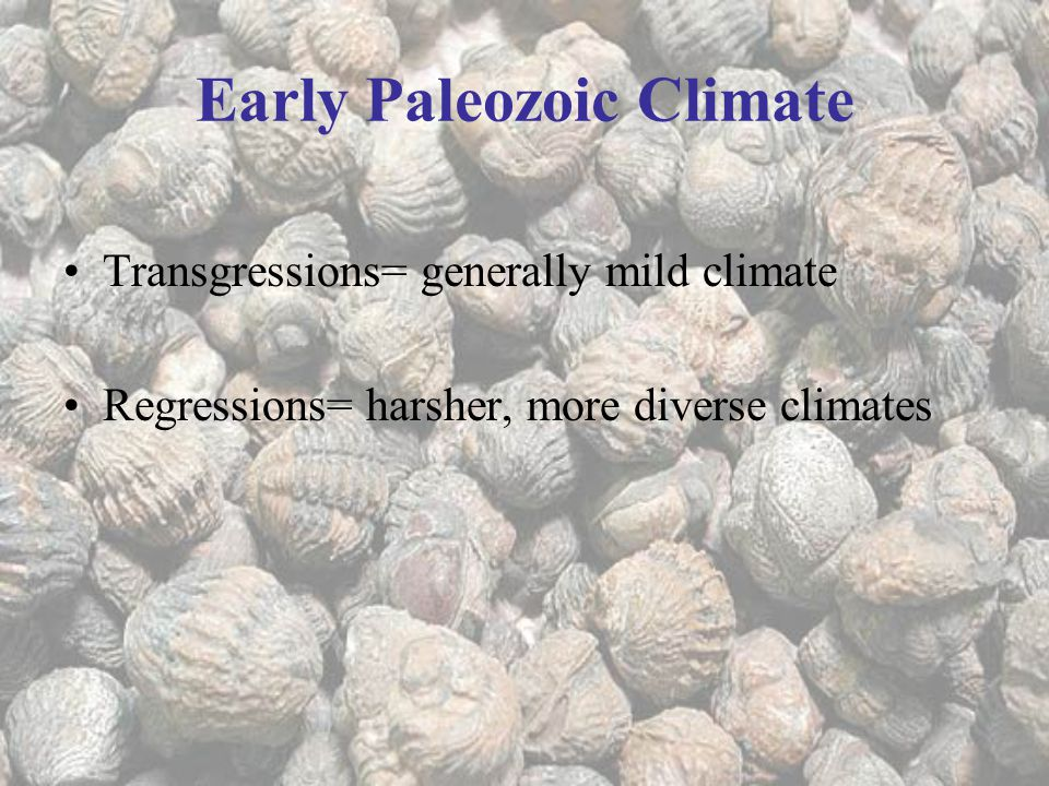 Early Paleozoic Climate