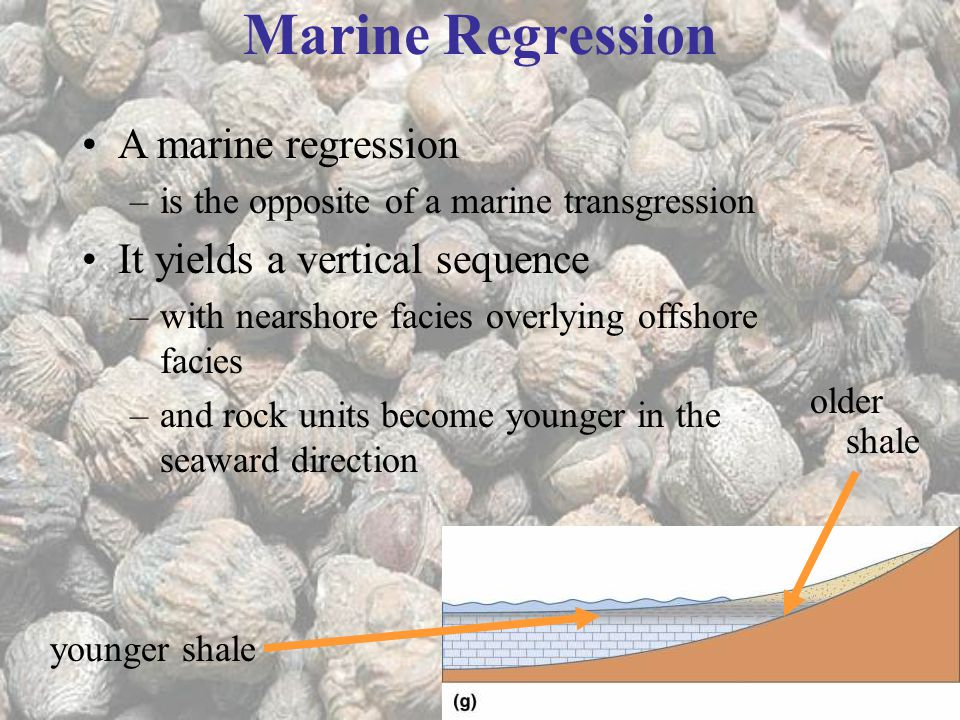 Marine Regression A marine regression It yields a vertical sequence