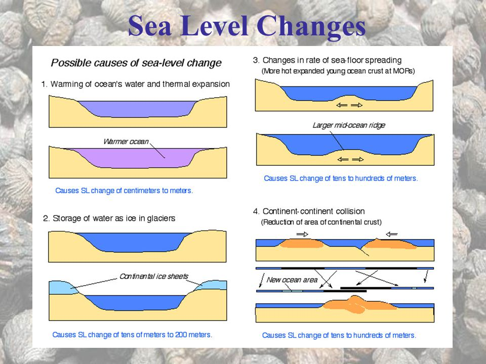 Sea Level Changes