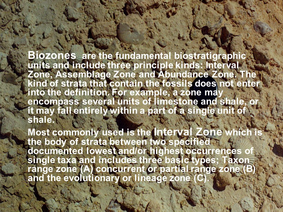Biozones are the fundamental biostratigraphic units and include three principle kinds: Interval Zone, Assemblage Zone and Abundance Zone. The kind of strata that contain the fossils does not enter into the definition. For example, a zone may encompass several units of limestone and shale, or it may fall entirely within a part of a single unit of shale.
