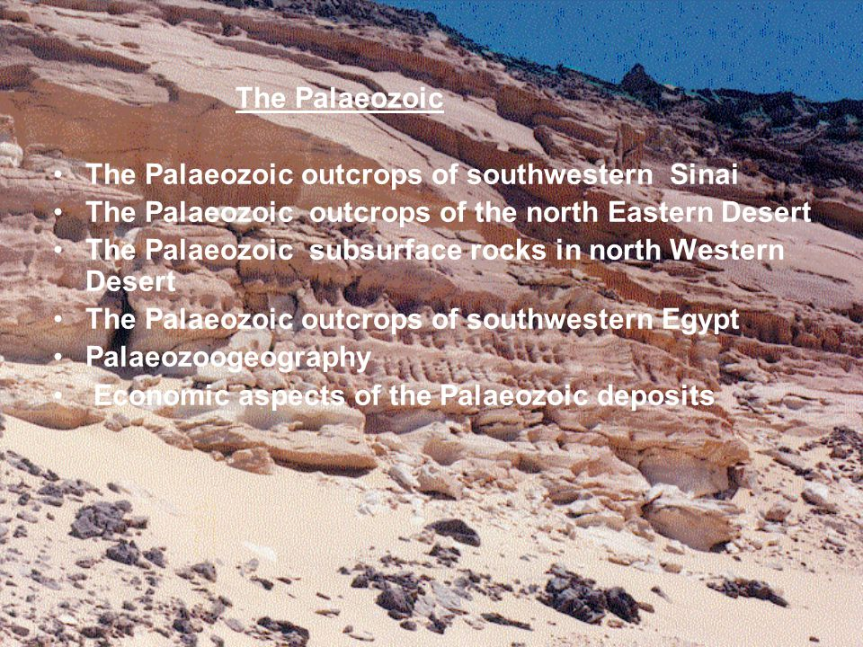 The Palaeozoic The Palaeozoic outcrops of southwestern Sinai. The Palaeozoic outcrops of the north Eastern Desert.