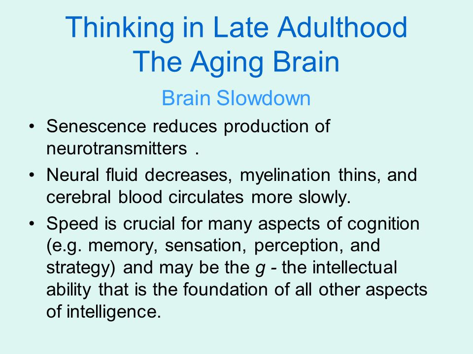 Thinking in Late Adulthood The Aging Brain