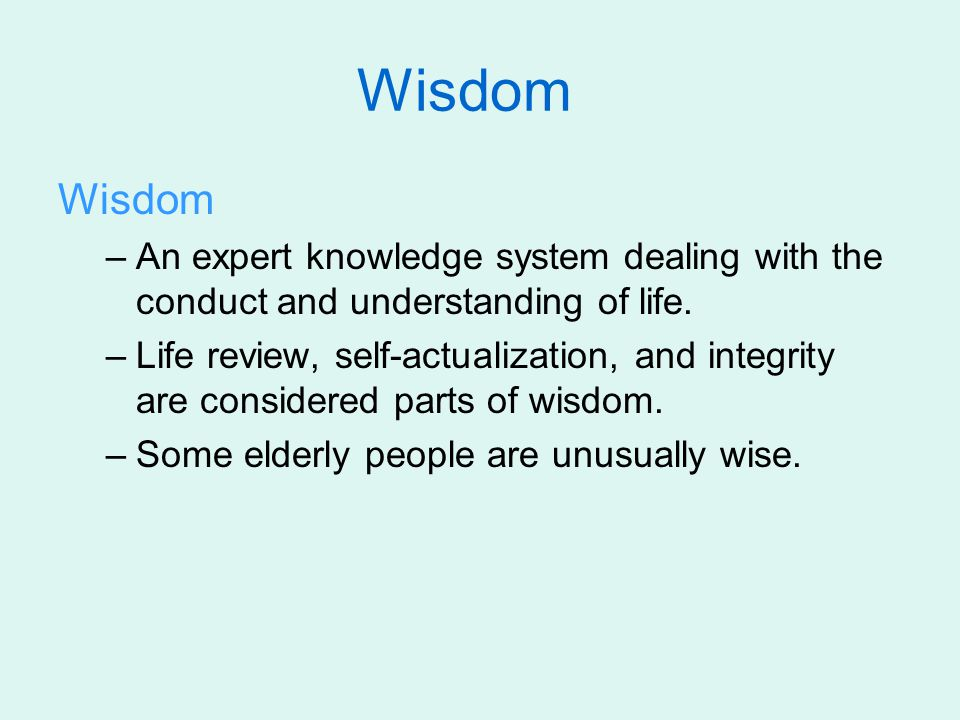 Wisdom Wisdom. An expert knowledge system dealing with the conduct and understanding of life.