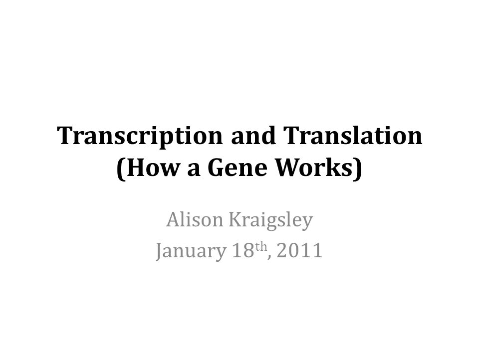 Transcription and Translation (How a Gene Works)