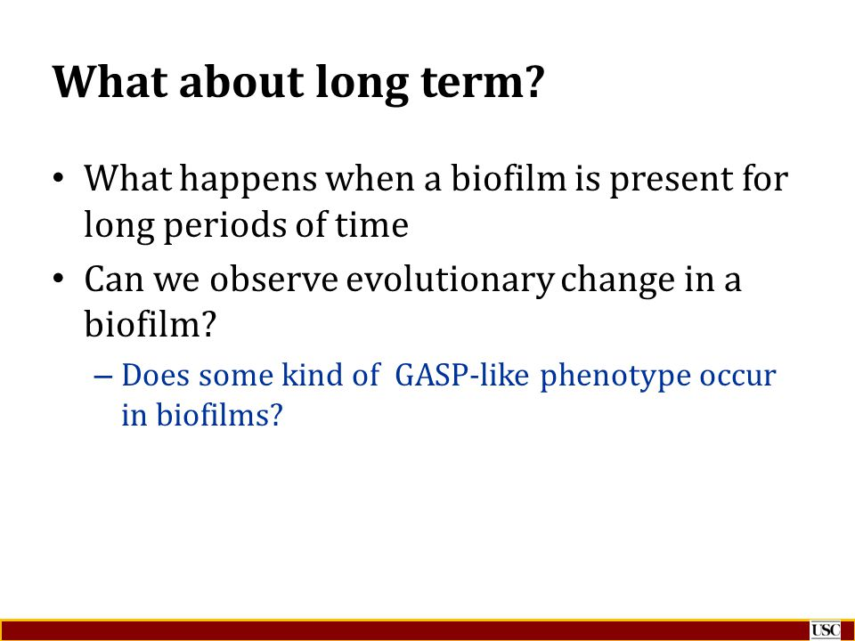 What about long term What happens when a biofilm is present for long periods of time. Can we observe evolutionary change in a biofilm