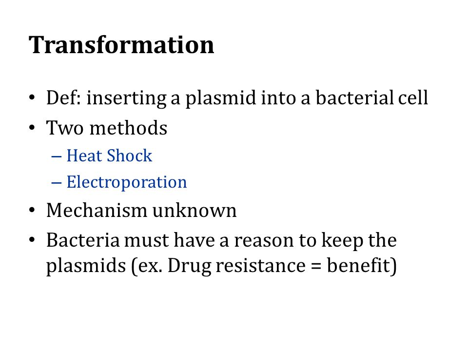 Transformation Def: inserting a plasmid into a bacterial cell