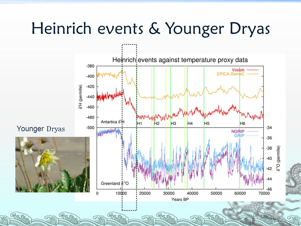Heinrich events & Younger Dryas