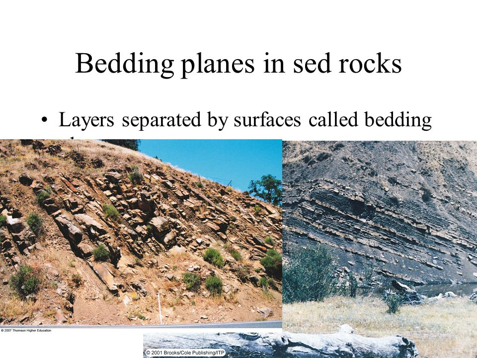 Bedding planes in sed rocks