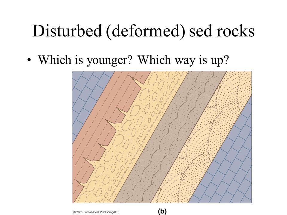 Disturbed (deformed) sed rocks